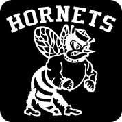 Hornets - Car Decal
