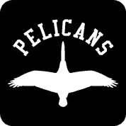Pelicans - Car Decal