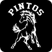 Pintos - Car Decal
