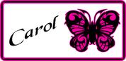 Butterfly 48-03