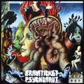 BRAINTICKET-Psychonaut-72 Kraut Psych Trippy-NEW CD