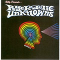 V.A.-Psychedelic Unknowns vol.8-60s Garage-NEW LP