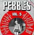 V.A-PEBBLES Vol5-60s US underground garage compil-newLP