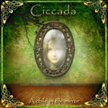 CICCADA-A CHILD IN THE MIRROR-GREEK Prog Rock,Folk Rock,Psych-NEW CD