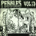V.A-PEBBLES Vol13-60s US underground psychedelic garage compilation-new LP