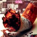 GOLIATH-S/T-UK heavy progressive-Maajun (A Taste of Tangier)-NEW LP