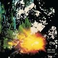 Del Rey-Immemorial-Post Rock-NEW CD