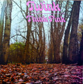 Twink-Think Pink-'70 UK Experimental,Prog Rock-NEW LP AKARMA WHITE