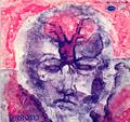 PARONI PAAKKUNAINEN-Plastic maailma-'71 SUOMI PROGRESSIVE FOLK-NEW LP SVART
