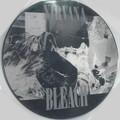 Nirvana-Bleach-'89 GRUNGE ROCK-NEW PICTURE DISC LP