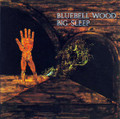 Big Sleep-Bluebell Wood-'71 UK Prog Rock-new LP