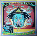 Twink And The Technicolour Dream-Sympathy For The Beast-NEW LP