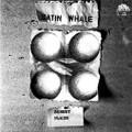 Satin Whale-Desert Places-'73 Krautrock-NEW LP