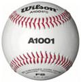 Wilson A1001BFS Baseball