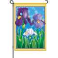 Enchanting Irisis: Garden Flag