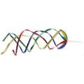 """22""""   Rainbow-   :  Hypno Twisters"""