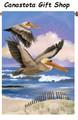 Pelican Beach: Brilliance Flag