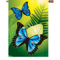 Blue Morpho Butterflies :     House Brilliance