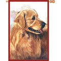 Golden Retriever :     House Brilliance