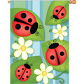 Ladybug Pageant :     House Brilliance