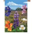 Desert Bloom :     House Brilliance