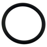 Strainer O-Ring SPX5500K #1184