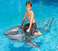 Inflatable Pool Shark #2381