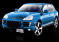 Porsche Cayenne 2009 & newer