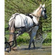 Shown here in full size horse, all the details are identical in the Mini Driving Harness