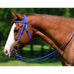 WESTERN BRIDLE (Full Browband) made from BETA BIOTHANE (Solid Colored)