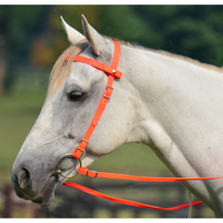 Quick Change HALTER BRIDLE with Snap on Browband made from BETA BIOTHANE (Solid Colored)