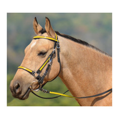 Traditional HALTER BRIDLE with BIT HANGERS made from BETA BIOTHANE (ANY 2 COLOR COMBO)