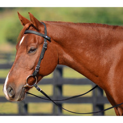 Quick Change HALTER BRIDLE with Snap on Browband made from LEATHER