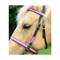 ENGLISH BRIDLE with REFLECTIVE DAY GLO Biothane