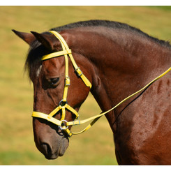 SIDEPULL Bitless Bridle made from BETA BIOTHANE (Solid Colored)