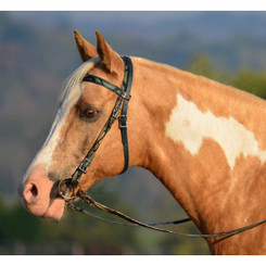 WESTERN BRIDLE (Full Browband) made with CAMOUFLAGE Beta Biothane