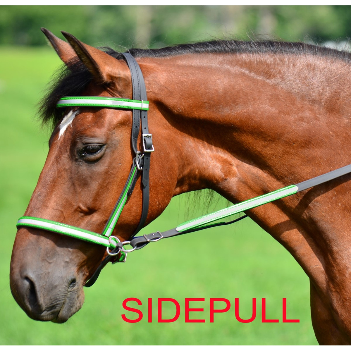 2 in 1 BITLESS BRIDLE made with REFLECTIVE DAY GLO Beta Biothane