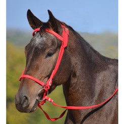 ICELANDIC BRIDLE made from BETA BIOTHANE (Solid Colored)