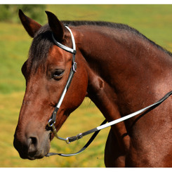 WESTERN BRIDLE (One Ear or Two Ear Split Ear Browband) made from BETA BIOTHANE (ANY 2 COLOR COMBO)