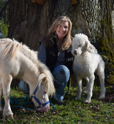 I am so fortunate to be able to communicate with all animals both large and small.  I have had the privilege of working with loving pet owners, equine owners, trainers and veterinarians.  I am blessed with an  understanding of symptoms and emotions which has helped to solve both medical and emotional challenges.  I look forward to the opportunity to assist you with connecting with your beloved family members both here and those that have crossed over the rainbow bridge.