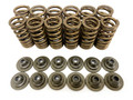 Dirt Launch Powersports Performance Valve Spring Kit: YXZ1000R