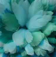 Goose Feather Fringe