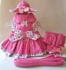 Strawberry Patch Harness Dress Set