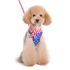 Easy-Go Patriotic Harness