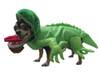 Green Iguana Costume