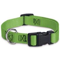Electric Lime Dog Collar