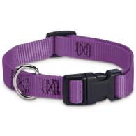 Purple Nylon Dog Collar