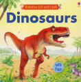 Dinosaurs (Usborne Lift and Look) (Board Book)