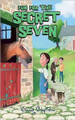Fun for the Secret Seven 15 (Paperback)