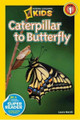NGK Readers: Caterpillar to Butterfly Level 1 (Paperback)